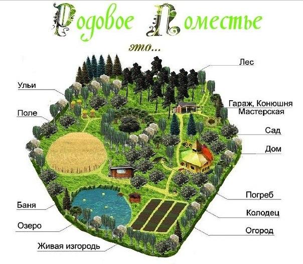 rodovoe_pomeste.jpg